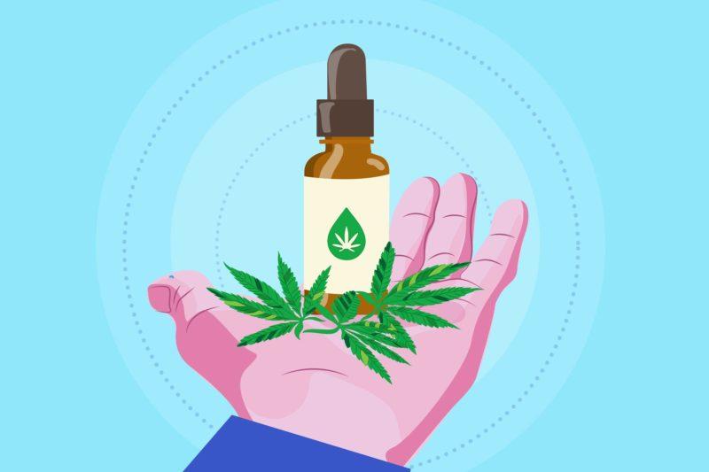 Cartoon shows a hand holding cannabis leaves and CBD oil