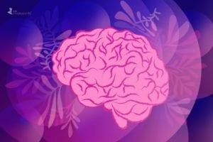 Rewiring the Brain for Calm