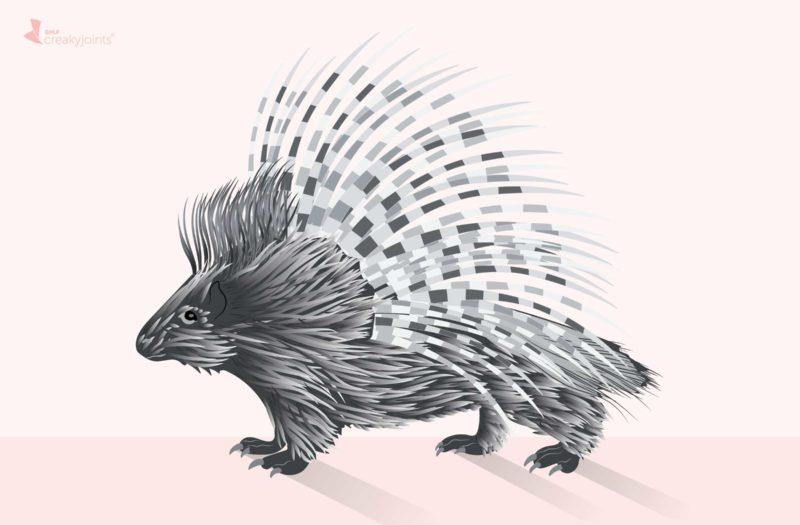 Porcupine Chronic Pain
